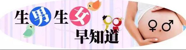 香港8周胎儿性别鉴定