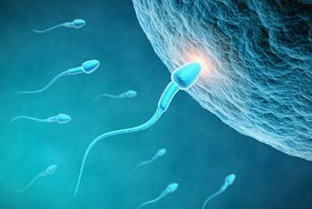 备孕为什么要提前3个月?你知道原因吗?