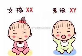 怀孕香港验血要几周