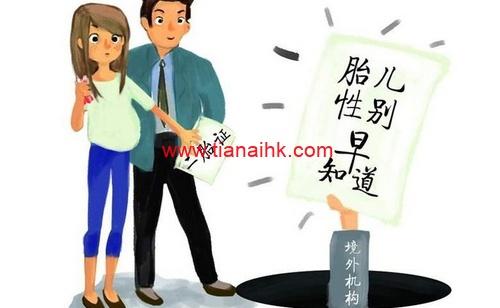 香港抽血验胎儿性别需警惕黑中介