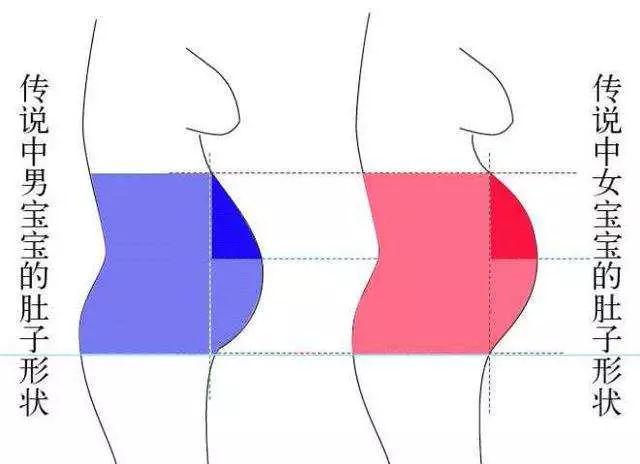 怀孕肚子尖圆对照图,教你怎么看孕妇肚子尖圆
