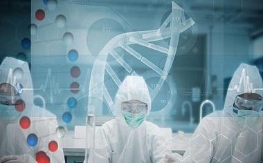 香港验血鉴定宝宝性别只需要7周