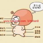 怎样看懂香港胎儿DNA鉴定孕妇验血检测性别的报告