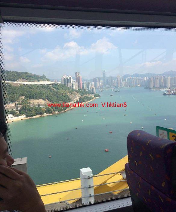 香港验血准吗费用大约多少?