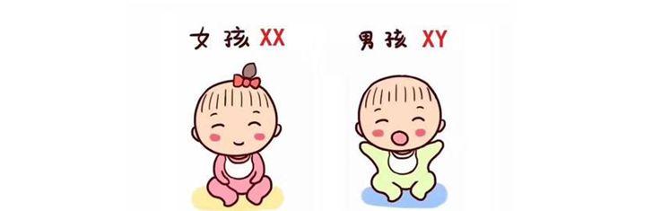 香港验血测男女准最详细的介绍流程