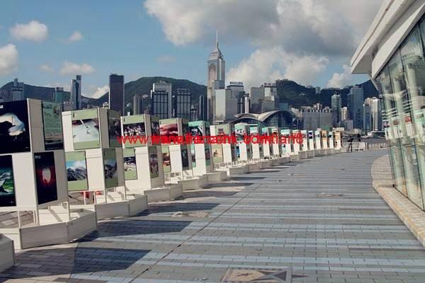 刚从香港验血回来,分享那些香港验血查男女你所不知道的事